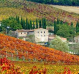 Wine Tasting Day Tours from Florence Area
